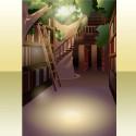 パーチェの森の図書館の背景 昼